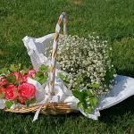 Simple bouquet de gypsophile pour la mariée, boutonnière blanche pour le marié et  roses pour la famille.