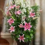 Liliums roses, delphiniums blancs et un nuage de gypsophile pour les bouquets de l'église.
