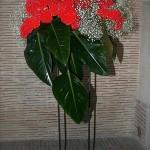 Dans la grande cheminée, un bouquet de célosies rouges et de feuilles de philodendron Red beauty.