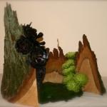 Jeux d'ombres et de lumières dans la forêt : composition de style libre