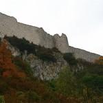Les murailles du château de Peyrepertuse se détachent au dessus des végétaux aux couleurs d'automne.