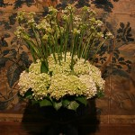 Composition d'hortensias et Ornithogallums arabicum appelées aussi Etoiles de Bethléem. Dans le vestibule,le bouquet reprend les couleurs de la tapisserie du XVII ème siècle représentant des scènes de chasse.