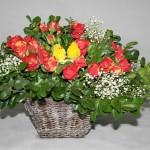 Petites roses et gypsophile sur une corbeille évasée.