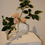 Caresses : branches de camellia et roses délicates dans des vases en verre.
