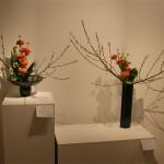 Accueil : Moribana et Nageire. Renoncules,cordyline et branches de pêcher.