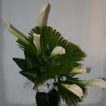 Palmes et feuilles d'aspidistra. A l'instar des partitions de Chopin, les arums déroulent leurs corolles blanches .