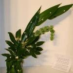 Feuilles d'aralia, de dracaena et molucelle. Les petites fleurs blanches et les baies noires évoquent la musique de Chopin.