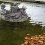 Lumière d'automne sur un bassin du jardin Français. Louis xv a étendu le domaine du Grand Trianon et en a confirmé la vocation scientifique .