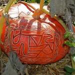 Rouge vif d'Etampes : potiron dont les fruits sont d'une couleur vermilllon intense.