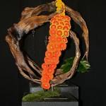 Orange en germinis de tons différents sur une structure en agave séchés, Sophie Durand.