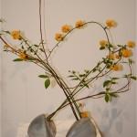 Composition printannière de l'école d' Ikebana Sogetsu réalisée en Kerria japonica ou Corète du Japon.
