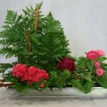 Dans une jardinière en zinc, un petit pot de Germinis et les œillets de poète  dessinent une harmonie de roses.