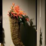 Zimbabwe. Corne d'abondance en Tillandsia garnie de baies d'Hypericum, fleurs d' Héliconia et feuilles d'Aspidistra.