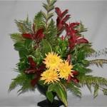 Les dahlias sont les fleurs d'automne aux couleurs éclatantes.