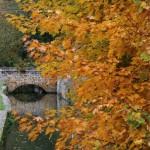 De nombreux petits ponts enjambent la rivière.