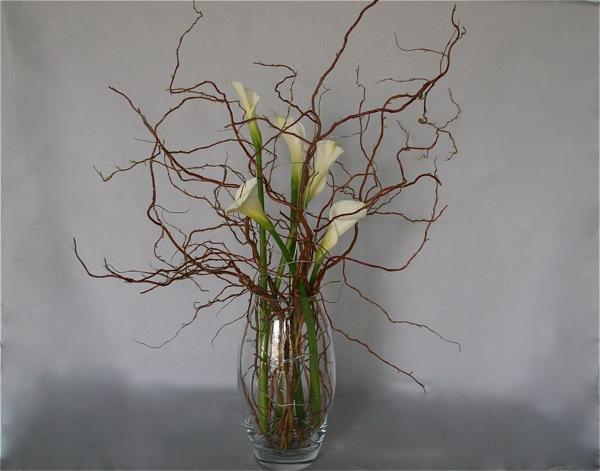 le fil bonsa est travaill comme les branches de saule. Black Bedroom Furniture Sets. Home Design Ideas