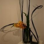 Branches travaillées de  Cornouiller noir et orchidées Vanda dans des vases en verre. Annick Jambou.