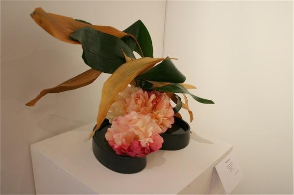 Jeu de feuilles d'aspidistra fraîches et sèches et pivoines Sunset coral. Maryline Bodelet.