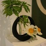 Composition emblème de l'école Sogetsu dans un vase lune. Pivoines arbustives et aucuba. Nicole Dineur.