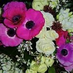 Différentes inflorescences composent l'harmonie d'un bouquet.