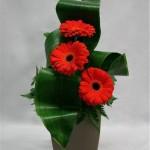 Quelques feuilles, trois germinis composent un bouquet épuré très présent cependant.