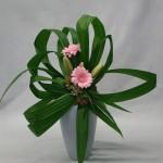 Découpées en élégantes lanières, les feuilles créent un bouquet aérien.
