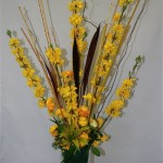 Le forsythia est le végétal qui annonce le printemps au jardin tout comme les fleurs jaunes de la corète du japon.
