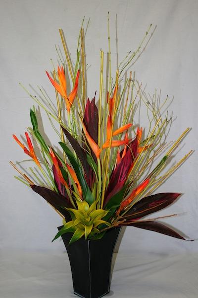Branches de cornouiller inspirations florales - Cordyline feuilles qui jaunissent ...