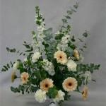 Ses rameaux, vendus en toutes saisons, doivent être disciplinés pour pouvoir structurer un bouquet.