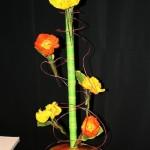 En s'épanouissant, les pavots laissent apparaître les couleurs éclatantes de leurs pétales; Floramy Nantes 2009.