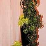 Des chrysanthèmes Shamrock verts accompagnent une savante construction de presles.