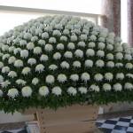Exposé dans le pérystile du Grand trianon à Versailles, cet Ozukuri est composé d'un seul plant de fleur.