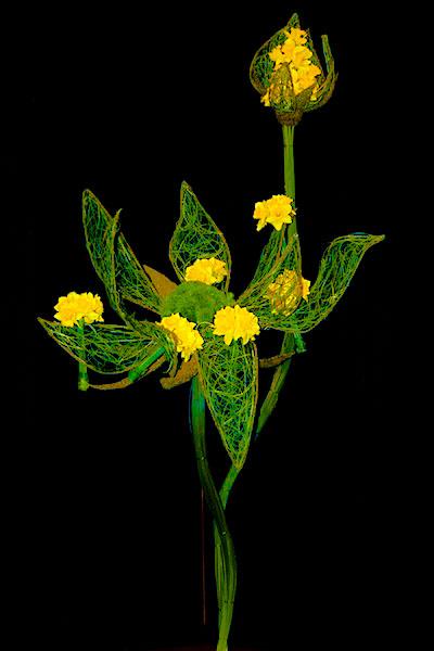 Les grands pétales d'herbes tissées sont décorés de multiples bouquets de jonquilles.