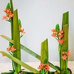 Bouquet de lignes construit avec feuilles de phormium, ornithogalles oranges et feuilles de galax.