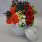 Dahlias et chrysanthèmes  sont les fleurs d'automne par excellence.