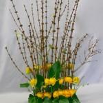 Grand buisson de printemps, branches et renoncules alignées.