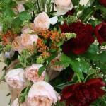 Gros plan sur les fleurs de saison : roses et pivoines largement épanouies agrémentées de végétaux de jardin.