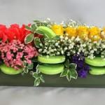 Godetias, roses et bouvardias agrémentés de  feuillage de pittosporum.