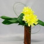 Les deux gros dahlias cactus jaune citron sont soulignés de volutes de flexigrass.