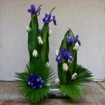 Les iris accompagnent les verticales et sont également travaillés en masse.