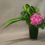 Une masse d'hortensias roses équilibre la force des deux feuillages.