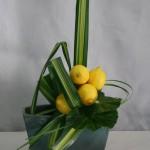 Composition sans fleurs de feuilles travaillées en triangles et masse de citrons jaunes.