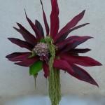 Composition de Cordylines rouges, et fleurs d'automne.