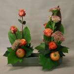 En automne, grappes fleuries de Sedum spectabile et pommes .