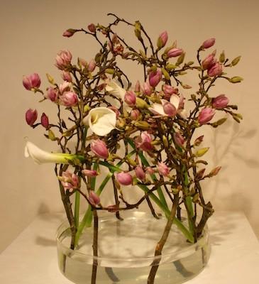 Les branches de magnolia semblent danser une ronde dans la coupe en verre. Ecole Misho