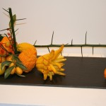 Morinomo : cédras-notamment variété Main de Bouddha-kumquats et branche de Yuzu. Exposition Ikebana Sogetsu Paris Mairie du 4ème.