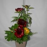 Après la floraison, le feuillage de pivoine restera intéressant dans les bouquets.