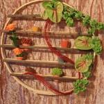 Sur une roue présentoir à épices, jeu d'anthuriums vert et de molucelle, appelée aussi clochette d' Irlande.