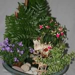 Pots de Campanules et de fuchsia miniature avec des galets dans une coupe ronde.
