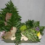 Jardin miniature avec écorces, plantes vertes et fleuries dans une large jardinière en céramique.